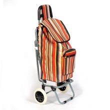 Shopping Trolley with Folding Seat