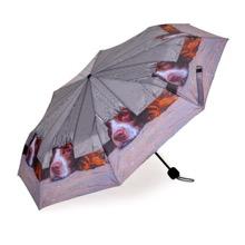 I Spy Telsecopic Umbrella