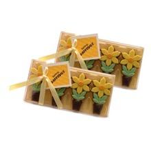 Chocolate Daffodils Twinpack