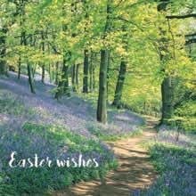 Easter Woodland Cards