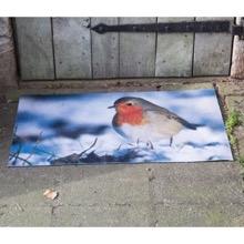 Robin Redbreast Doormat