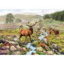 National Park Jigsaw 1000 Piece