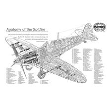 Haynes Spitfire 1000-piece Jigsaw