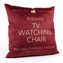 TV Watching Chair Cushion