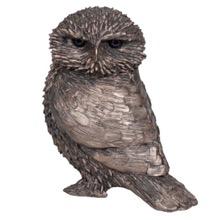 Ollie the Little Owl