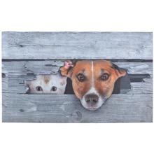 Cat & Dog Doormat