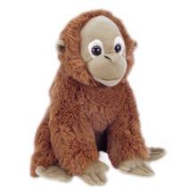 Joshua Orangutan