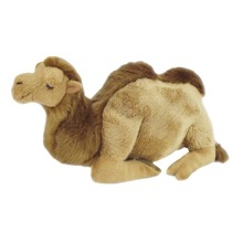 Engelbert the Camel