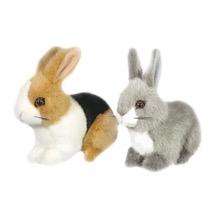 Baby Rabbits Paul & Paula