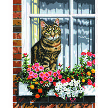 Cat In The Window - Paint by Numbers