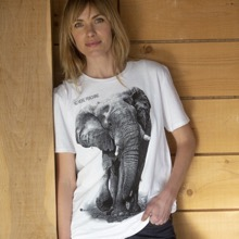 No More Poaching Elephant