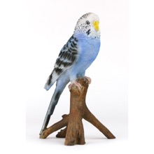 Pal Joey Budgerigar Figurine