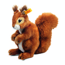 Niki the Red Squirrel