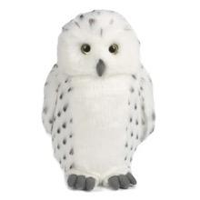 Simon the Snowy Owl