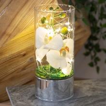 Illuminated Everlasting Orchids Terrarium