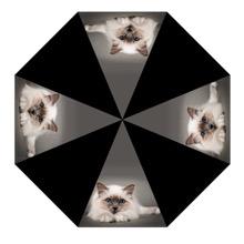 Cat Umbrella